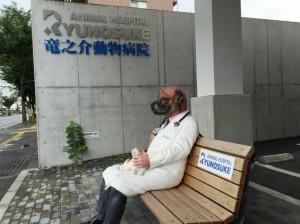 熊本市中央区 動物病院 事例⑥